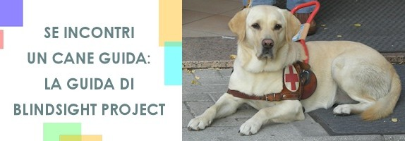 Se incontri un cane guida: la guida di Blindsight Project