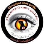 Il Vademecum sul Cane Guida di Blindsight Project tradotto in Inglese