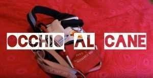Video spot di Blindsight Project sul Cane Guida