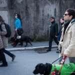 Il gruppo cammina con i cani guida verso il palaghiaccio
