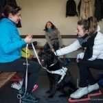 Ilaria chiacchiera negli spogliatoi con una ragazza del pattinaggio artistico, tra di loro il cane guida di Ilaria