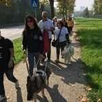 Giornata Nazionale del Cane Guida a Ferrara