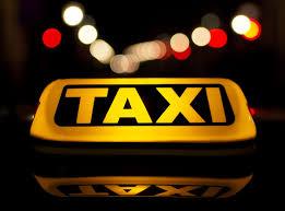 Taxi e Cane Guida