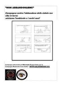"""Miniatura del volantino della campagna """"Non abbandonarmi"""" di Blindsight Project"""