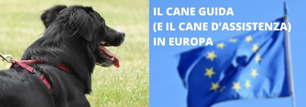 Il Cane Guida (e il cane d'assistenza) in Europa